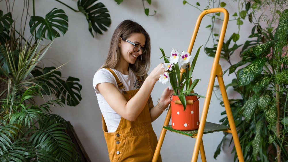 The biggest mistake you're making when you buy plants online