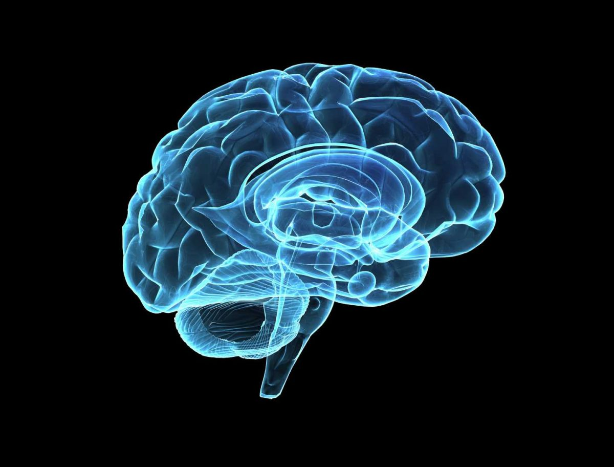 Measuring the complexity of the aging brain