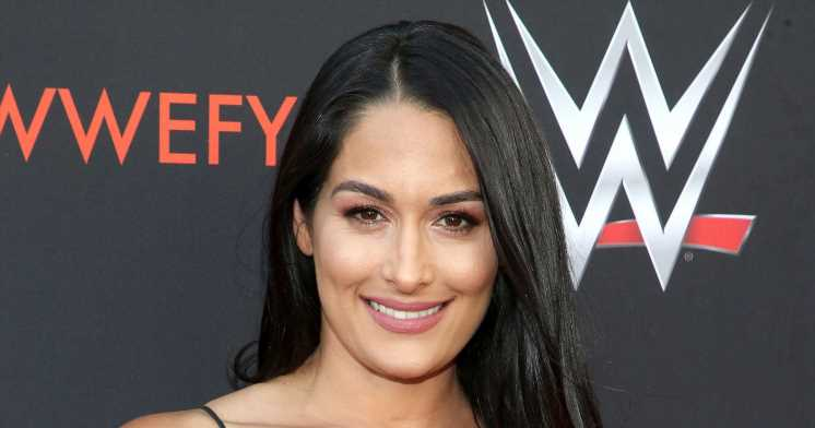 Pregnant Nikki Bella Reveals Environmental Parenting Decision Ahead of Baby