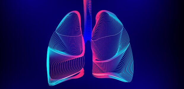Scientists track down a protein that may add to lung damage in asthma and related diseases
