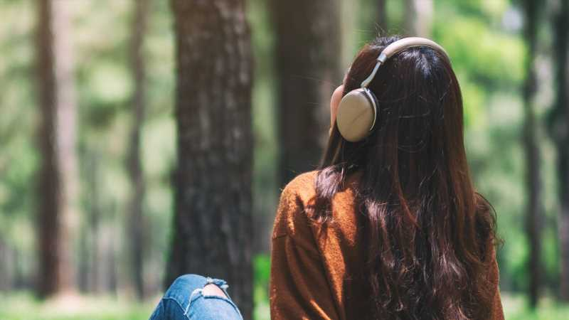 This Is One Of The Most Soothing Sounds That Can Help You Feel Better Throughout The Day