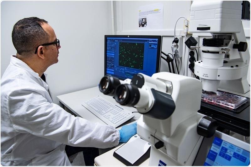 Study provides new insight into the genetics of coronary artery disease