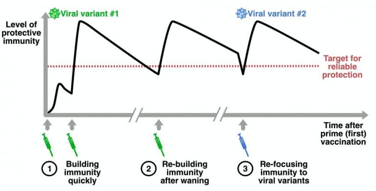 Why do we need booster shots, and could we mix and match different COVID vaccines?