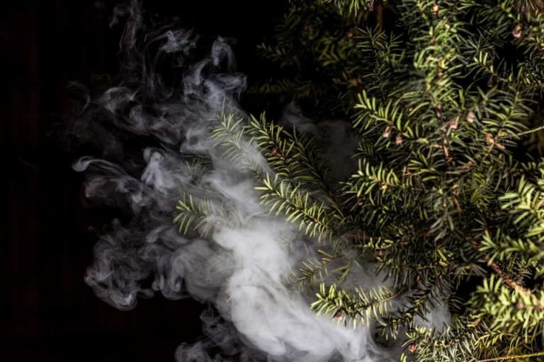 E-cigarettes with a cigarette-like level of nicotine are effective in reducing smoking