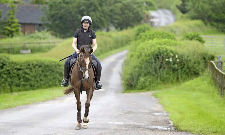 Expert Reveals Why Rich People AreAcquiringRace Horses