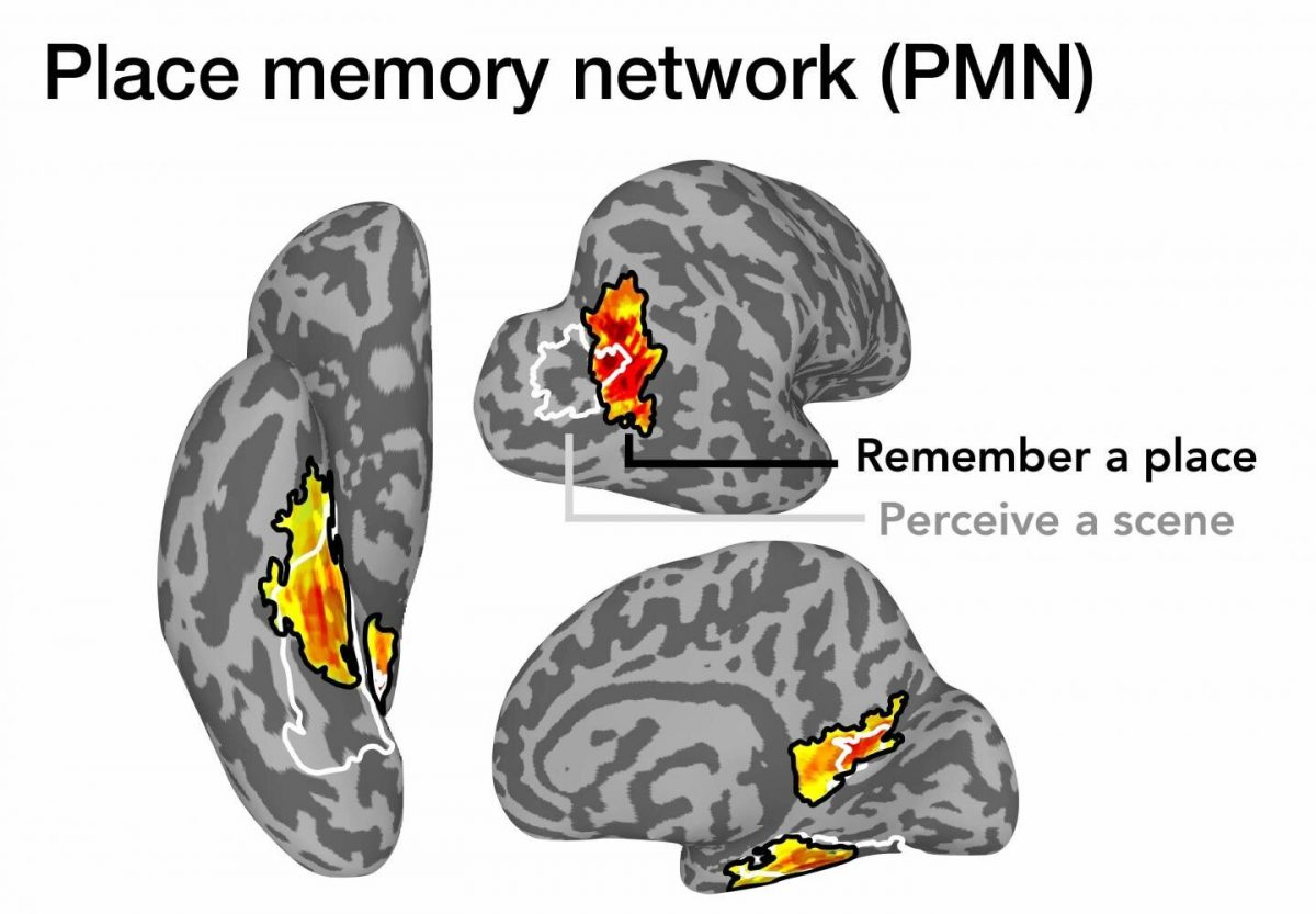 New study reveals where memories of familiar places are stored in the brain