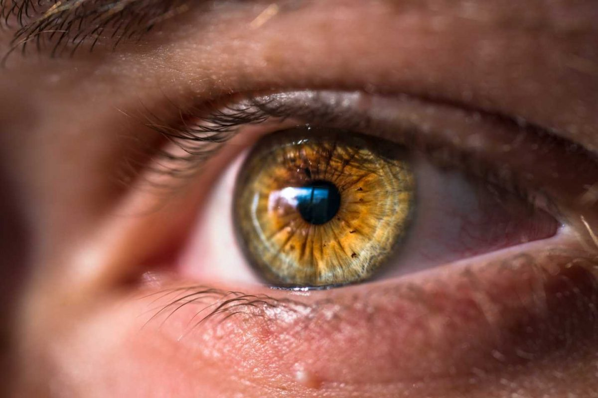 Vitamin B3 as a possible treatment for glaucoma
